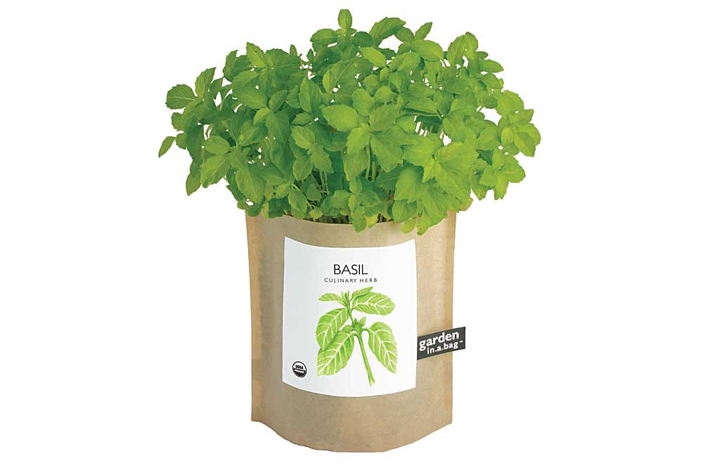 awkward relationships gift guide potting shed creations basil garden in a bag