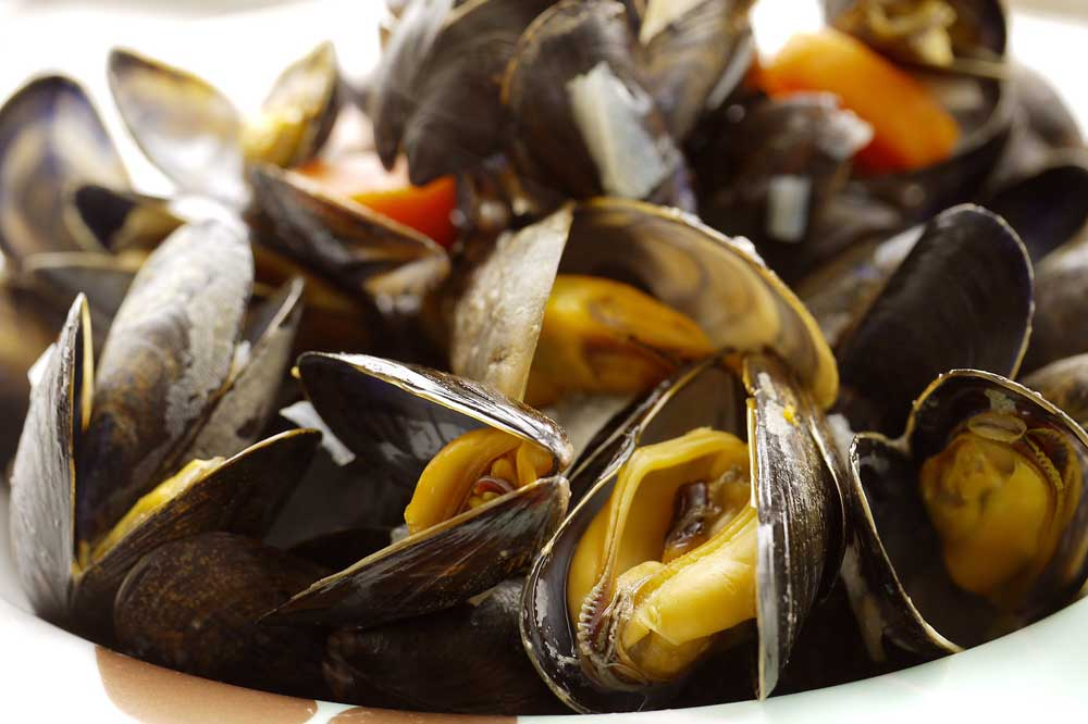steamed mussels three ways