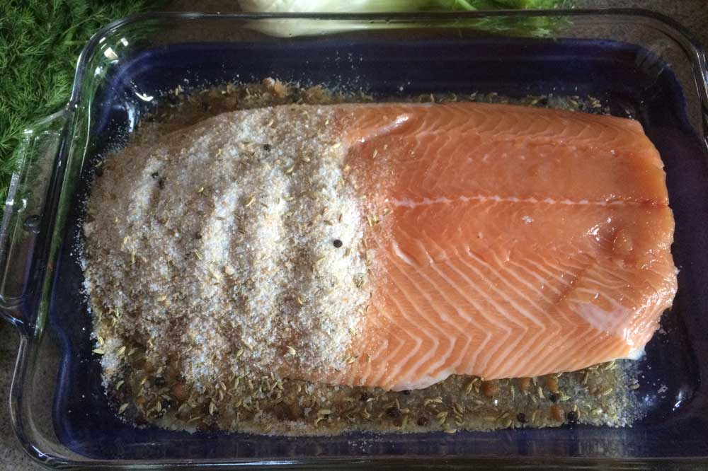 easy gravlax salmon for the holidays curing